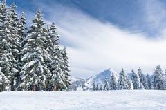 De winterlandschap in bergen met sneeuw en sneeuw behandelde bomen Royalty-vrije Stock Foto's