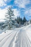 De winterlandschap in Beskid Zywiecki- Polen Stock Foto