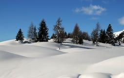 De winterlandschap bij de pas van San Pellegrino, Dolomiet, Italië Royalty-vrije Stock Afbeeldingen