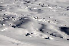 De winterlandschap bij de pas van San Pellegrino, Dolomiet, Italië stock foto's