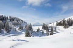 De winterlandschap bij MT Dobratsch stock afbeeldingen