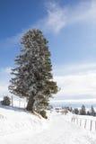 De winterlandschap bij MT Dobratsch stock afbeelding