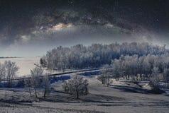 De winterlandschap, bos door sneeuw met hemelhoogtepunt wordt behandeld van sterren die royalty-vrije stock fotografie