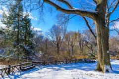De winterlandschap in Central Park van de Stad van New York met ijs en sneeuw, de V.S. royalty-vrije stock foto