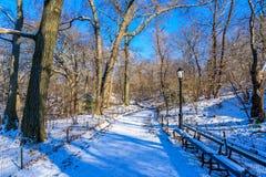 De winterlandschap in Central Park van de Stad van New York met ijs en sneeuw, de V.S. stock foto's
