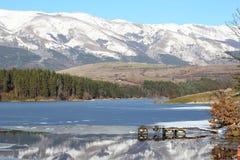 De winterlandschap Dushantsi Stock Foto's