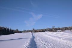 De winterlandschap en slepen voor skiërs Stock Fotografie