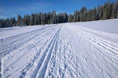 De winterlandschap en slepen voor skiërs Stock Afbeeldingen