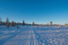 De winterlandschap in Hedmark-provincie Noorwegen stock afbeelding