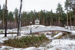 De winterlandschap in het bos royalty-vrije stock foto's