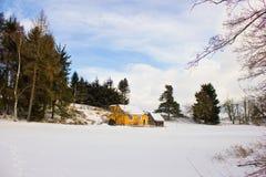De winterlandschap in het bos Stock Afbeelding