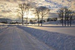 De winterlandschap - ijzige bomen in sneeuwbos in de zonnige ochtend royalty-vrije stock afbeelding