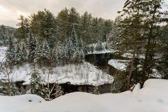De winterlandschap iof een wildernispark Royalty-vrije Stock Afbeelding