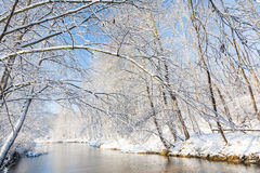De winterlandschap: kleine rivier in sneeuwhout Stock Afbeelding