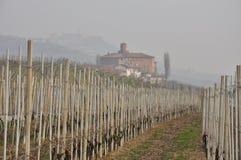 De winterlandschap - Langhe-gebied Piemonte, Italië stock fotografie