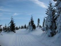 De winterlandschap langs de sporen voor langlaufski Royalty-vrije Stock Foto's