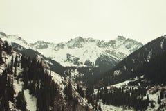 De winterlandschap met bergen Stock Afbeelding