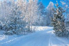 De winterlandschap met de weg Royalty-vrije Stock Afbeeldingen