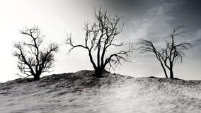 De winterlandschap met Dode Bomen Royalty-vrije Stock Foto