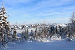 De winterlandschap met dorpsmening Royalty-vrije Stock Afbeeldingen