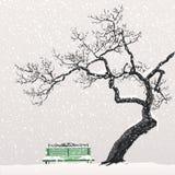 De winterlandschap met een boom en een bank Stock Afbeeldingen