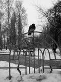 De winterlandschap met een duifzitting op het latwerk royalty-vrije stock foto