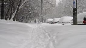 De winterlandschap met een grote sneeuwval in Moskou in 4 Februari, 2018 stock video