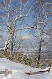 De winterlandschap met een vulkaan Royalty-vrije Stock Foto's