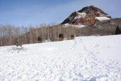 De winterlandschap met een vulkaan Royalty-vrije Stock Afbeeldingen