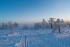 De winterlandschap met mist vooraan royalty-vrije stock foto's