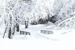 De winterlandschap met naakte bomen en kleine die brug met sneeuw worden behandeld Stock Foto