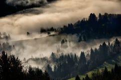 De winterlandschap met ochtendmist die wordt behandeld Royalty-vrije Stock Foto