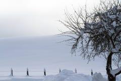 De winterlandschap met omheining Stock Fotografie