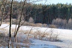 De winterlandschap met rivier en bomen in de winter stock foto