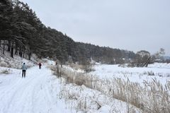 De winterlandschap met skiërs royalty-vrije stock foto