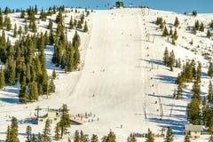 De winterlandschap met skiërs Royalty-vrije Stock Afbeelding