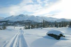 De winterlandschap met skisporen royalty-vrije stock foto's