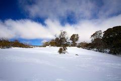 De winterlandschap met sneeuw Royalty-vrije Stock Afbeelding