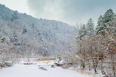 De winterlandschap met sneeuw behandelde bomen en bevroren vallei Royalty-vrije Stock Afbeeldingen