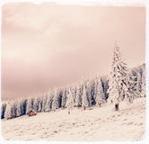 De winterlandschap met sneeuw in bergen de Karpaten, de Oekraïne vi Stock Afbeelding