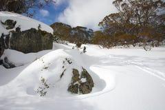 De winterlandschap met sneeuw en het ski?en sporen Stock Afbeelding