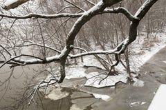 De winterlandschap met sneeuw en ijs Royalty-vrije Stock Afbeeldingen