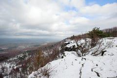 De winterlandschap met sneeuw wordt behandeld die royalty-vrije stock fotografie