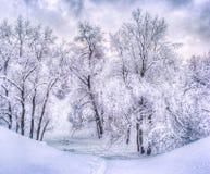 De winterlandschap met sneeuwbomen langs het de winterpark - de winter sneeuwscène in uitstekende tonen stock afbeeldingen
