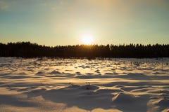 De winterlandschap met Zonsondergang achter Bos, over Ingesneeuwd Gebied royalty-vrije stock fotografie