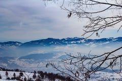 De winterlandschap in Novi Pazar, Servië Stock Foto