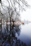 De winterlandschap op Havel-Rivier (Duitsland) Stock Fotografie