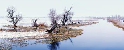 De winterlandschap op Havel-Rivier (Duitsland) Royalty-vrije Stock Fotografie