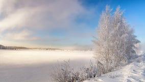 De winterlandschap op de Ural-rivier met mist en bomen in de sneeuw, Rusland, royalty-vrije stock fotografie