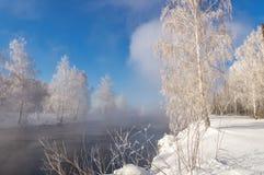 De winterlandschap op de Ural-rivier met mist en bomen in de sneeuw, Rusland, stock foto
